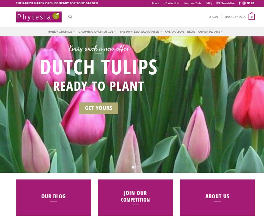 Fast Track Online Catalog Garden Orchid Store